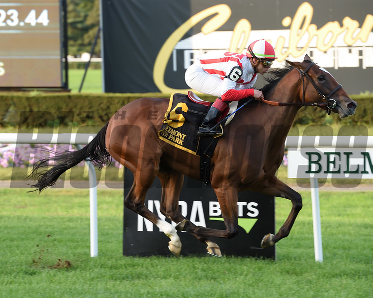 Newspaperofrecord wins 2018 Miss Grillo Stakes at Belmont Park. Coglianese Photos