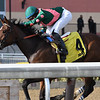 Positive Spirit wins the 2018 Demoiselle Stakes at Aqueduct<br /> Coglianese Photos/Annette Jasko