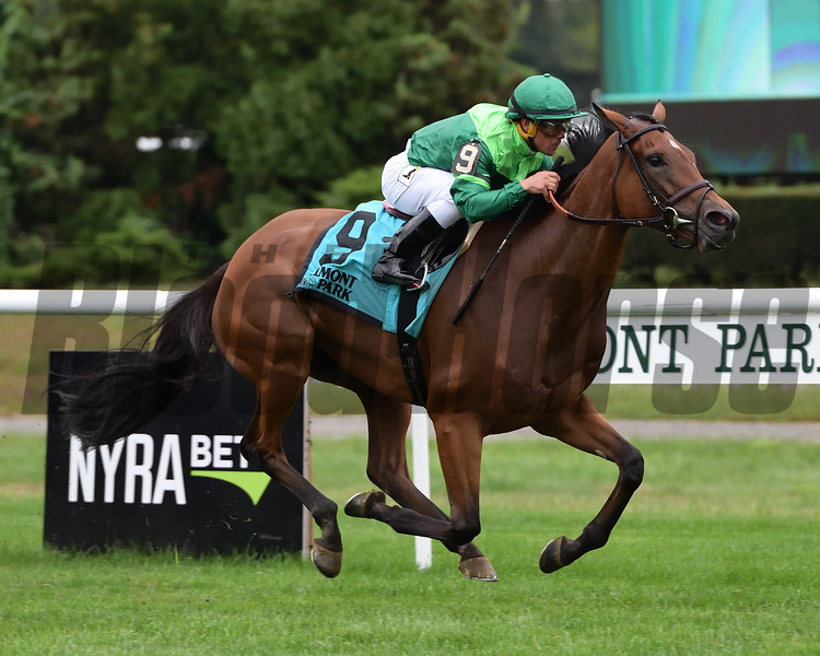 Fifty Five wins the 2018 John Hettinger Stakes<br /> Coglianese Photos/Joe Labozzetta