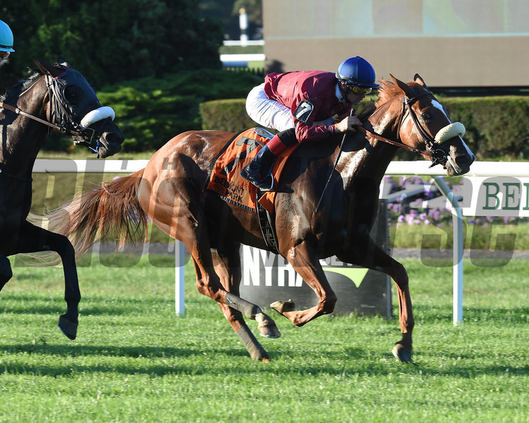 Californiagoldrush wins the 2018 Sands Point Stakes at Belmont Park. Photo: Coglianese Photos