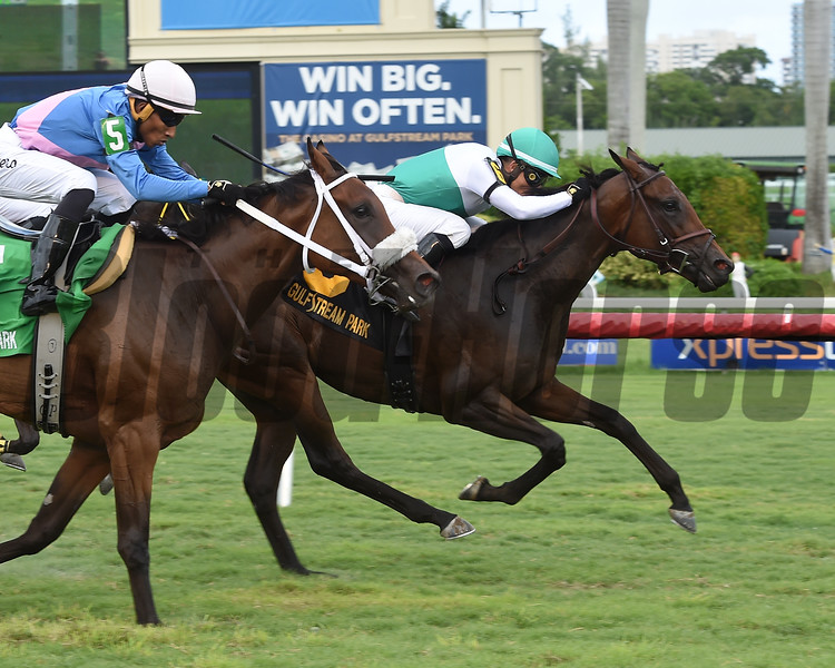 Entirely wins the 2018 Sharp Susan Stakes<br /> Coglianese Photos/Leslie Martin