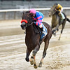 Come Dancing wins the 2018 Royal Delta Stakes<br /> Coglianese Photos/Chelsea Durand