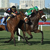 Si Que Es Buena wins the 2018 Via Borghese Stakes at Gulfstream Park<br /> Coglianese Photos/Lauren King