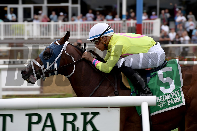 World of Trouble wins the 2018 Allied Forces Stakes<br /> Coglianese Photos/Joe Labozzetta