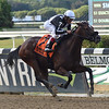 Cartwheelin Lulu wins the 2018 Joseph A. Gimma Stakes<br /> Coglianese Photos