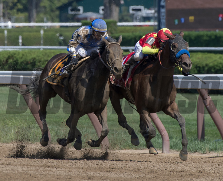 Abel Tasman wins the 71st running of The Personal Ensign at the Saratoga Race Course Aug. 25, 2018 in Saratoga Springs, N.Y.  Photo by Skip Dickstein