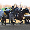 Recruiting Ready wins the Gravesend Stakes at Aqueduct Sunday, December 23, 2018. Photo: Coglianese Photos