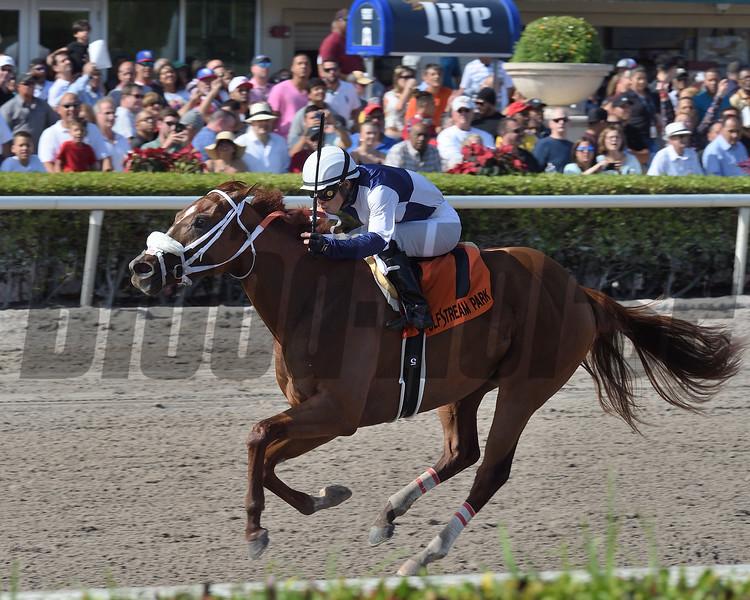 Zenden wins the 2018 Buffalo Man Stakes at Gulfstream Park.<br /> Coglianese Photos/Lauren King
