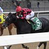 Forgotten Hero wins the 2018 New York Stallion Series Fifth Avenue Division at Aqueduct<br /> Coglianese Photos/Joe Labozzetta