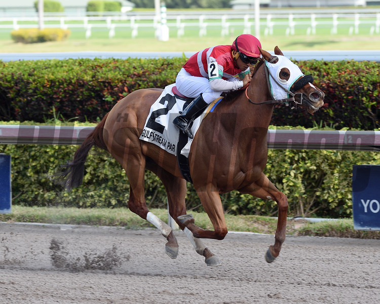 Bye Bye J wins the 2018 House Party Stakes at Gulfstream Park.<br /> Coglianese Photos