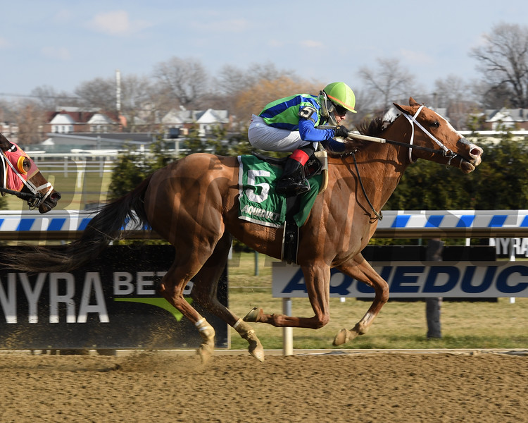 Vertical Oak wins the 2018 Garland of Roses Stakes at Aqueduct<br /> Coglianese Photos/Chelsea Durand