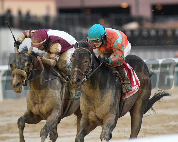Name Changer wins the Queens County Stakes at Aqueduct Saturday, December 22, 2018. Photo: Coglianese Photos/Chelsea Durand