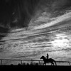 December 7, 2018: Keeneland training track on a cold December morning...<br /> © Rick Samuells/The Blood-Horse