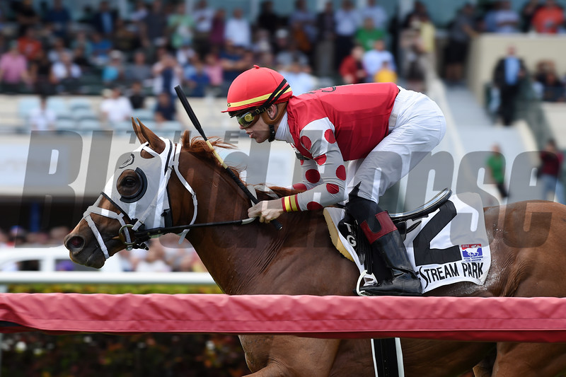 Henley's Joy wins the 2018 Pulpit Stakes at Gulfstream Park.<br /> Coglianese Photos/Lauren KIng