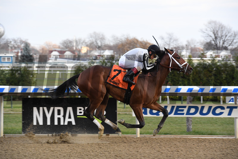 South of France wins 2018 Tepin Stakes at Aqueduct. Photo: Coglianese Photos/Susie Raisher