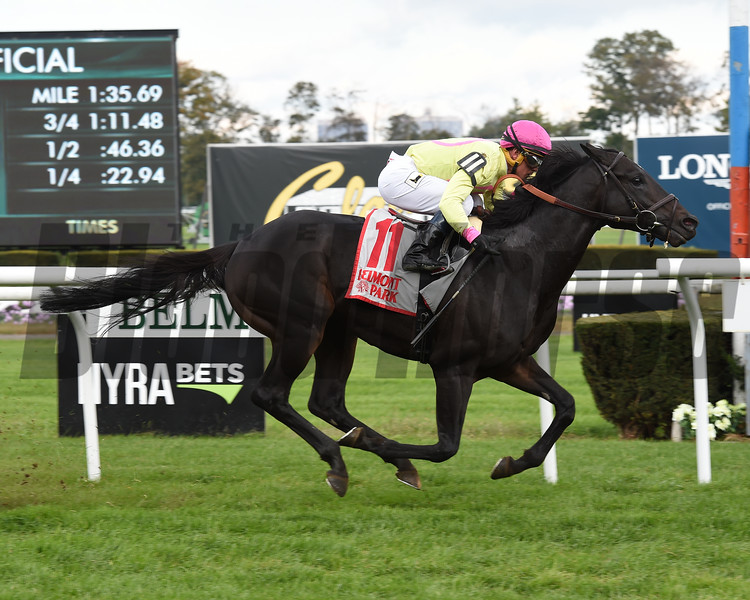 Offering Plan wins the 2018 Mohawk Stakes<br /> Coglianese Photos