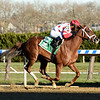 Bal Harbour wins the 2018 Gio Ponti Stakes at Aqueduct<br /> Coglianese Photos/Elsa Lorieul