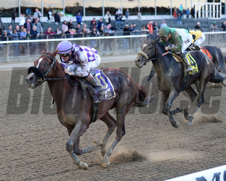 Pat On the Back wins the 2018 Empire Classic<br /> Coglianese Photos/Chelsea Durand