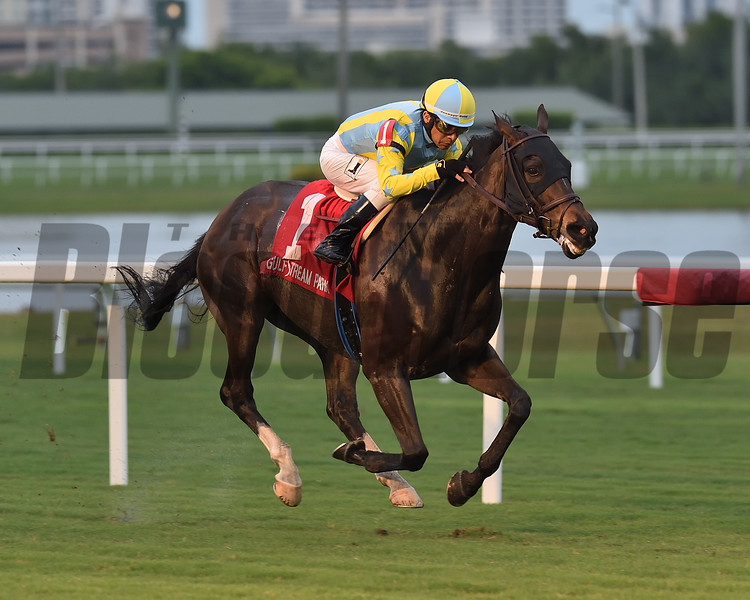 Glorious Empire wins the 2018 Ft. Lauderdale Stakes at Gulfstream Park<br /> Coglianese Photos/Lauren King