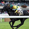 Forty Under wins the 2018 Pilgrim Stakes<br /> Coglianese Photos/Elsa Lorieul