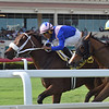 A Bit Special wins the 2018 Wait a While Stakes at Gulfstream Park<br /> Coglianese Photos/Lauren King
