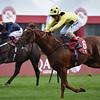 Ostilio wins the 2018 Qatar Prix Daniel Wildenstein<br /> Katsumi Saito Photo