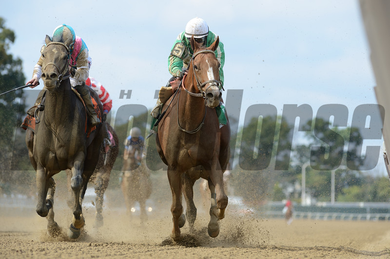 Highway Star wins the 2018 Iroquois Stakes at Belmont Park. Photo: Coglianese Photos