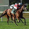 Fire Key wins the 2018 Floral Park Stakes at Belmont Park<br /> Coglianese Photos