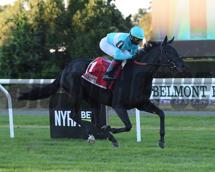 Rymska wins 2018 Athenia Stakes at Belmont Park. Photo: Coglianese Photos/Elsa Lorieul
