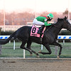 Bombshell wins the 2018 Forever Together Stakes at Aqueduct<br /> Coglianese Photos/Susie Raisher