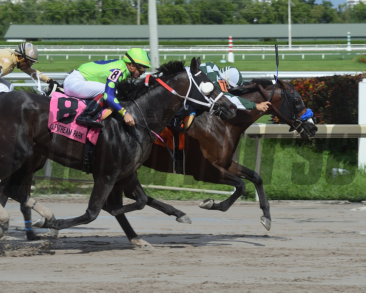 One of a Kind wins the 2018 The Vid Stakes<br /> Coglianese Photos/Leslie Martin