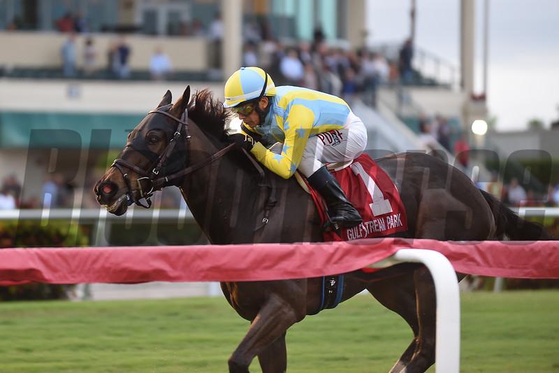 Glorious Empire wins the 2018 Ft. Lauderdale Stakes at Gulfstream Park<br /> Coglianese Photos/Brianna Vitt