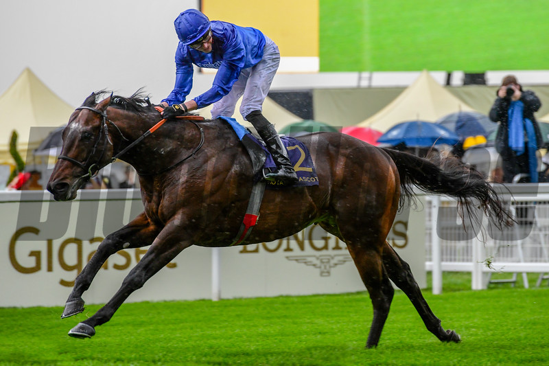 Blue Point; James Doyle Win the G1 Kings Stand Stakes; Royal Ascot; Ascot; UK; 6-18-19; photo by Mathea Kelley/Bloodhorse