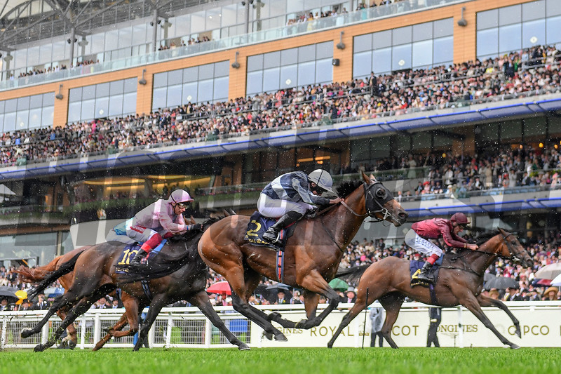 Circus Maximus and Ryan Moore Win the G1 St. James Palace Stakes; Royal Ascot; Ascot; UK; 6-18-19; photo by Mathea Kelley/Bloodhorse