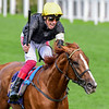 Stradivarius and Frankie Dettori win the G1 Gold Cup, 6-20-19, Royal Ascot, Ascot, UK, photo by Mathea Kelley/Bloodhorse