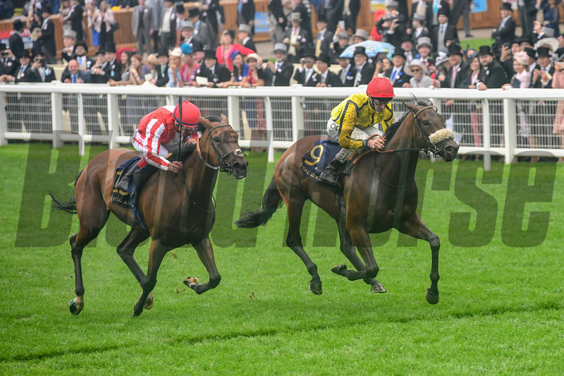 Move Swiftly and Daniel Tudhope win the G2 Duke of Cambridge Stakes, 6-19-20, Royal Ascot, Ascot, UK, photo by Mathea Kelley/Bloodhorse