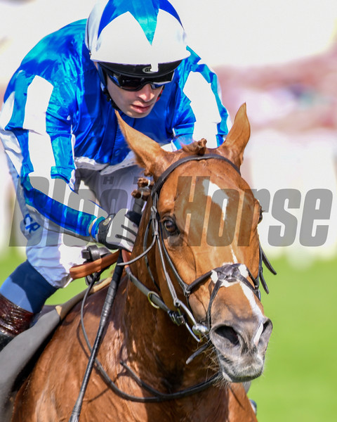Cleonte, Silvestre De Sousa, win the Queen Alexandra Stakes, Royal Ascot 6-22-19, Ascot, UK, Mathea Kelley-Bloodhorse