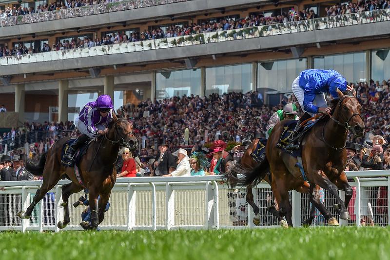 Pinatubo wins the 2019 Chesham Stakes at Royal Ascot<br /> Mathea Kelley-Bloodhorse