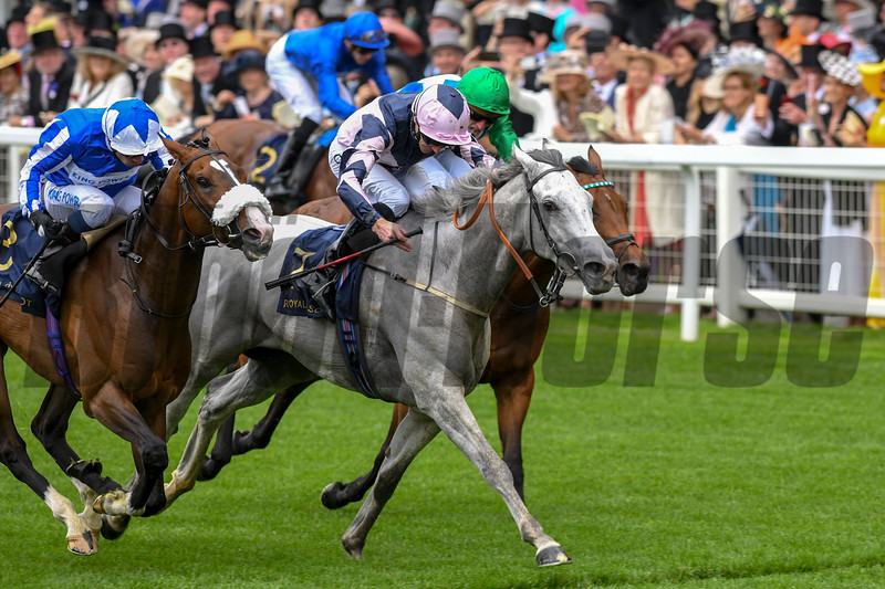 Lord Glitters, Daniel Tudhope, Win the G1 Queen Anne Stakes, Royal Ascot, Ascot, UK, photo by Mathea Kelley/Bloodhorse