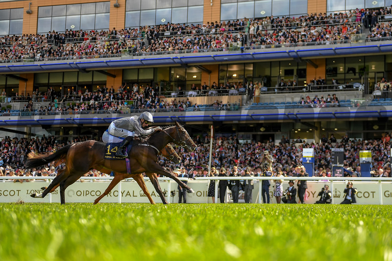 Space Traveller and Daniel Tudhope win the G3 Jersey Stakes, Royal Ascot 6-22-19, Ascot, UK, Mathea Kelley-Bloodhorse