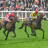 Move Swiftly wins the 2019 Duke Of Cambridge Stakes at Royal Ascot<br /> Mathea Kelley
