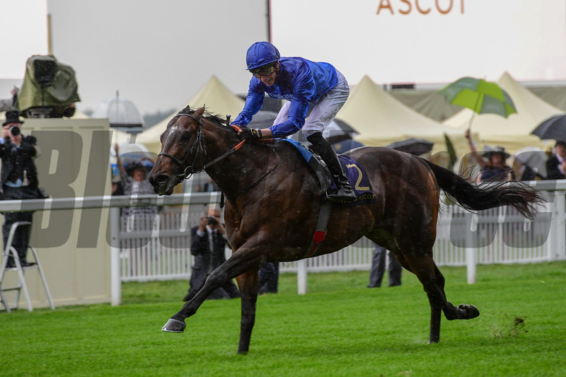 Blue Point, James Doyle Win the G1 Kings Stand Stakes, Royal Ascot, Ascot, UK, 6-18-19, photo by Mathea Kelley/Bloodhorse