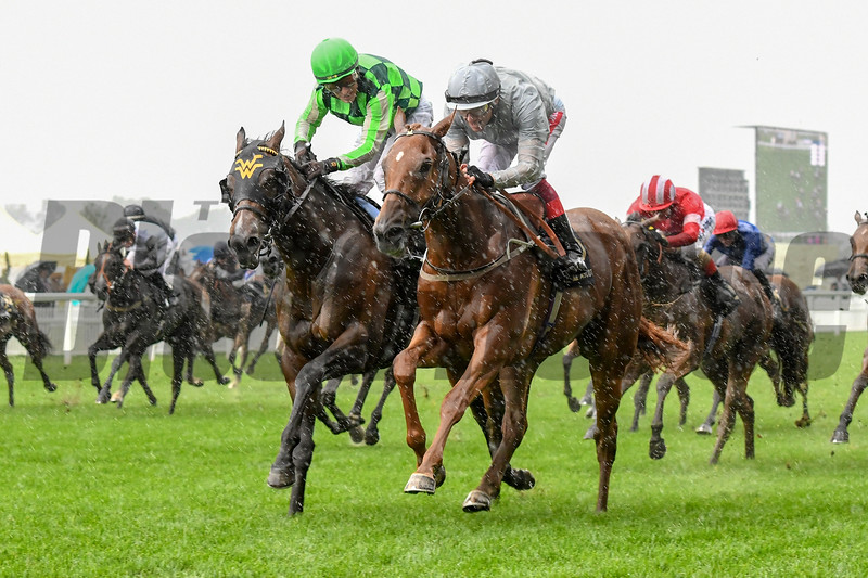 Raffle Prize (right) wins the 2019 Queen Mary Stakes at Royal Ascot<br /> Mathea Kelley