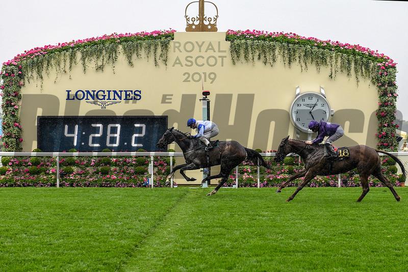 The Grand Visir wins the 2019 Ascot Stakes at Royal Ascot<br /> Mathea Kelley