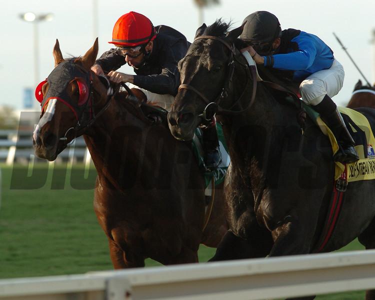 Einstein wins the 2008 Gulfstream Park Turf Stakes (G1T)<br /> Coglianese Photos