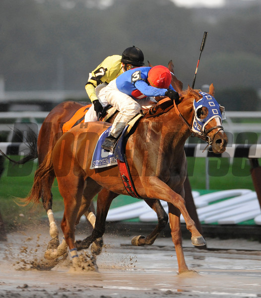 Summer Bird with Kent Desormeaux aboard wins the Jockey Club Gold Cup at Belmont Park October 3, 2009.<br /> Photo by Skip Dickstein