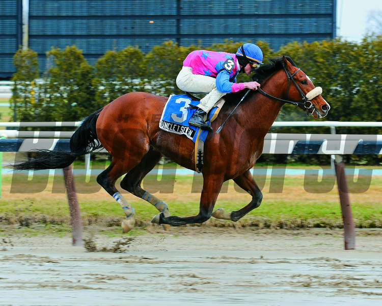 Uncle T Seven captures The Times Square Division at Aqueduct Race Track NY..3/29/09 ....ridden by Ramon A. Dominguez<br /> Coglianese Photos
