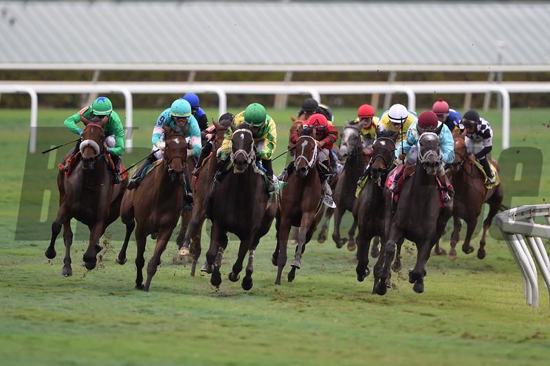 Si Que Es Buena wins the 2018 Via Borghese Stakes at Gulfstream Park<br /> Coglianese Photos/Tim Sullivan