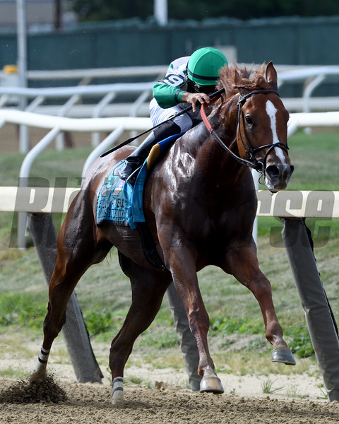 Promises Fulfilled wins the John A. Nerud Stakes Saturday, July 6, 3019 at Belmont Park. Photo: Coglianese Photos/Rob Mauhar