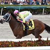 World of Trouble wins the 2019 Gulfstream Park Turf Sprint Stakes at Gulfstream Park<br /> Coglianese Photos/Lauren King